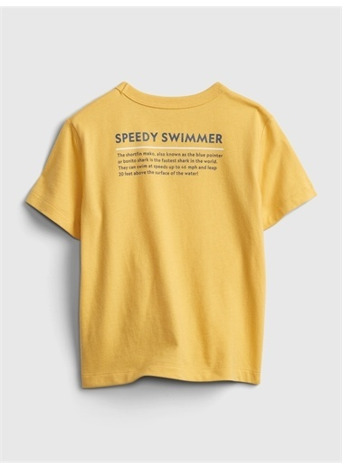 Gap National Geographic Organik Pamuklu Grafik T-Shirt Lacivert